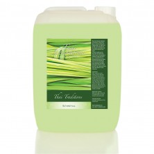 Thai Traditions ГЕЛЬ-СМУЗИ ДЛЯ ДУША ТАЙСКИЙ ЛЕМОНГРАСС LEMONGRASS SMOOTHIE BODY WASH, 5л